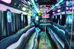Limo Party Bus New 20111